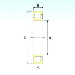 55 mm x 120 mm x 29 mm  ISB NJ 311 roulements à rouleaux cylindriques