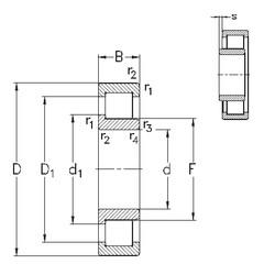 50 mm x 90 mm x 23 mm  NKE NJ2210-E-M6 roulements à rouleaux cylindriques