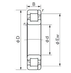 20 mm x 52 mm x 15 mm  NACHI NP 304 roulements à rouleaux cylindriques