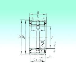 60 mm x 95 mm x 46 mm  NBS SL045012-PP roulements à rouleaux cylindriques