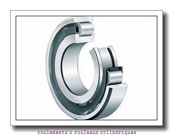 Toyana NJ3184 roulements à rouleaux cylindriques