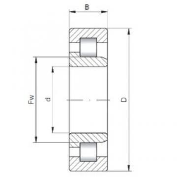 560 mm x 820 mm x 115 mm  ISO NJ10/560 roulements à rouleaux cylindriques