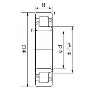 240 mm x 440 mm x 72 mm  NACHI NJ 248 roulements à rouleaux cylindriques