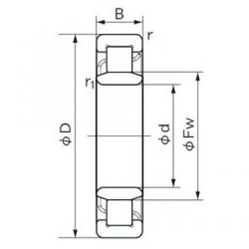 160 mm x 290 mm x 80 mm  NACHI NU 2232 roulements à rouleaux cylindriques