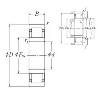 30 mm x 55 mm x 13 mm  NSK NU1006 roulements à rouleaux cylindriques