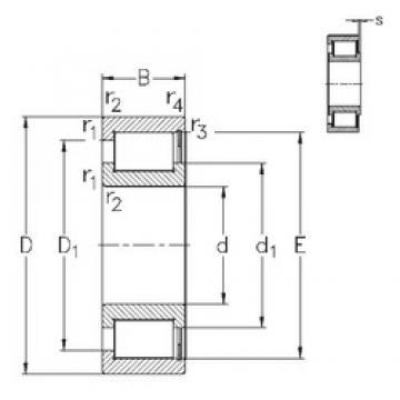 600 mm x 730 mm x 60 mm  NKE NCF18/600-V roulements à rouleaux cylindriques