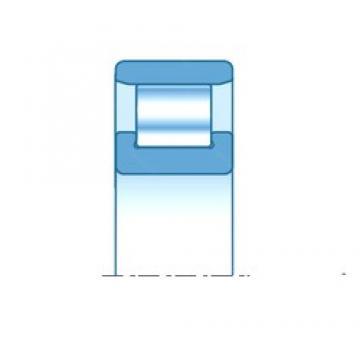 140,000 mm x 300,000 mm x 62,000 mm  SNR N328EM roulements à rouleaux cylindriques