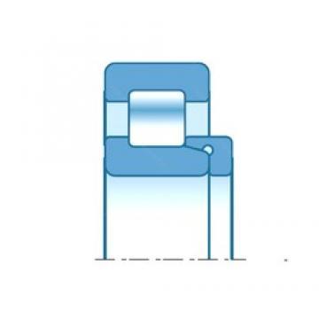 80,000 mm x 170,000 mm x 50,000 mm  NTN NH316 roulements à rouleaux cylindriques