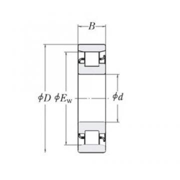 38,1 mm x 82,55 mm x 19,05 mm  RHP LRJ1.1/2 roulements à rouleaux cylindriques
