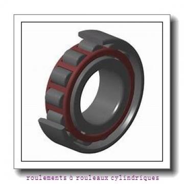 Toyana NF28/630 roulements à rouleaux cylindriques