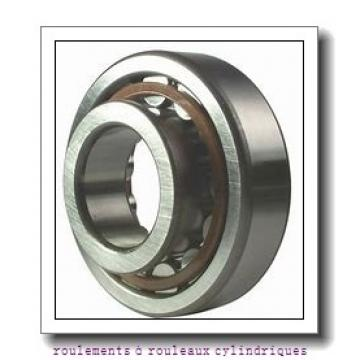 Toyana NH1064 roulements à rouleaux cylindriques