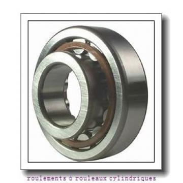Toyana NJ2211 E roulements à rouleaux cylindriques