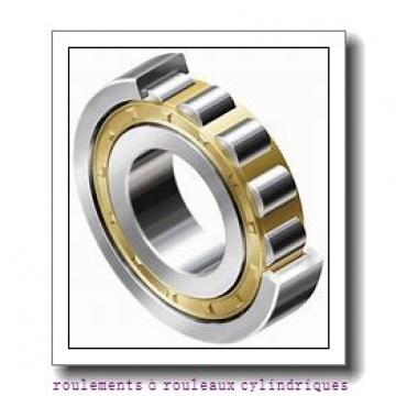 Toyana NH2356 roulements à rouleaux cylindriques
