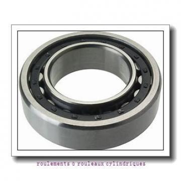 Toyana NP209 E roulements à rouleaux cylindriques