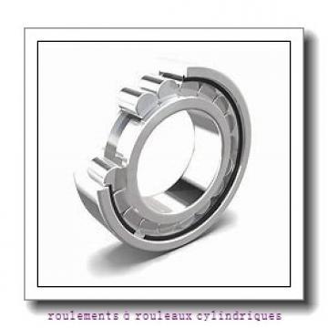 Toyana NJ1956 roulements à rouleaux cylindriques