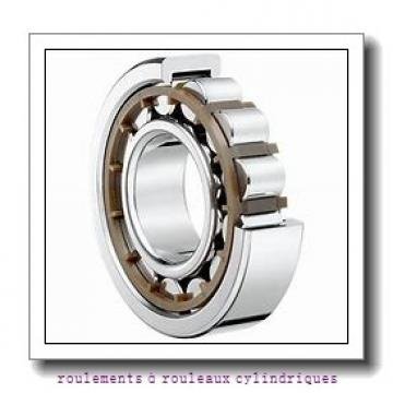 40 mm x 110 mm x 27 mm  NKE NJ408-M+HJ408 roulements à rouleaux cylindriques